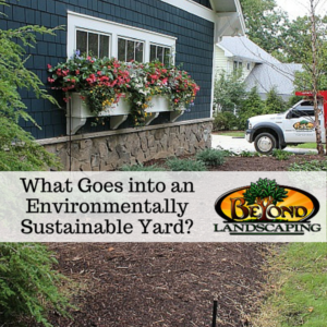 What Goes into an Environmentally Sustainable Yard-